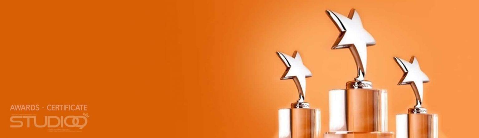 جوایز و گواهینامه ها