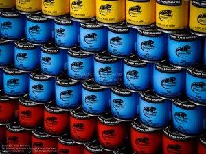 پروژه صنایع رنگ شکیبا